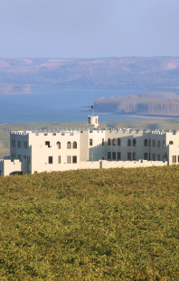 Chateau Burgozone