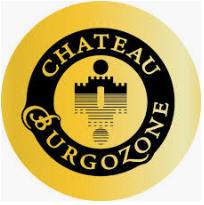 Burgozone_logo